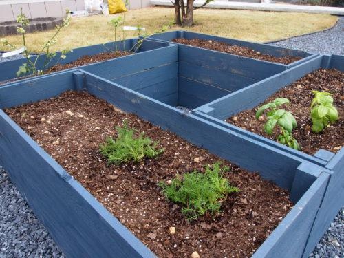 SUNRISEガーデンブログ更新しました「土づくり、種まき」