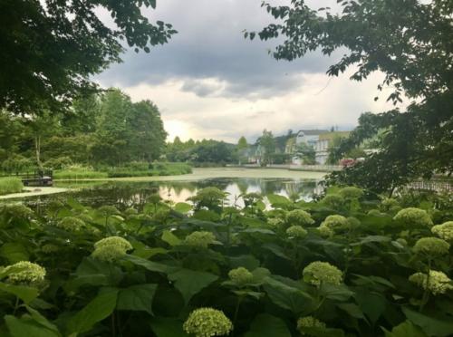 【ブログ】初夏の「軽井沢レイクガーデン」へ行ってきました